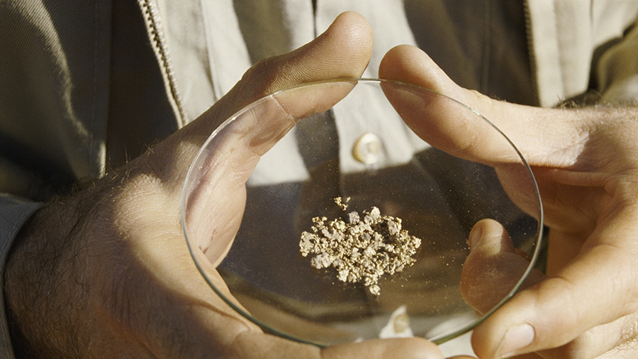 Interest in Artemis surges following discovery of small and large gold nuggets