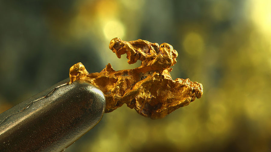 Elysium Resources announces gold discovery